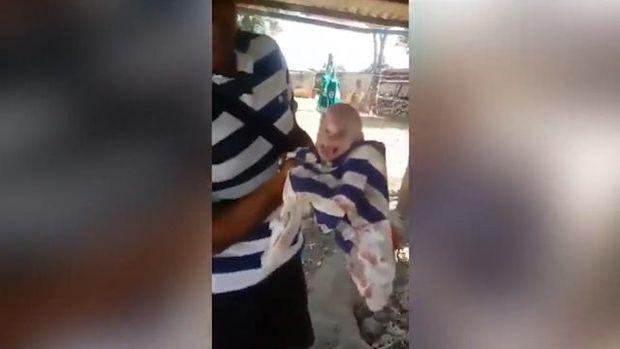 İnsan sifətli donuz balası görənləri dəhşətə gətirdi – VİDEO