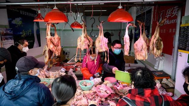 Çində koronavirusun yayıldığı iddia olunan heyvan bazarları yenidən açıldı