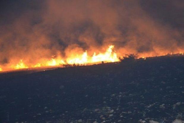 Abşeronda iki hektar ərazi yandı