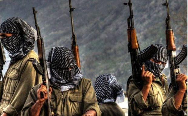 Qarabağda daha doqquz PKK/YPG terrorçusu məhv edilib